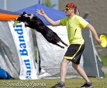 skyhoundz se reg 2011 (small)